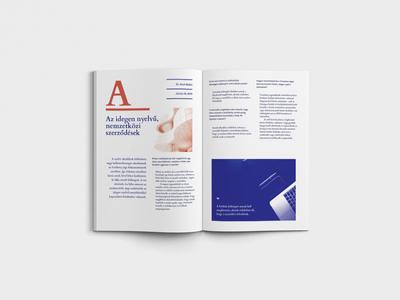 Law Agency Editorial Design Spread monochromatic duotone typography magazine spread editorial design law agency