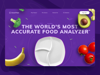 SmartPlate® Website Design & Animation website interaction animation design web