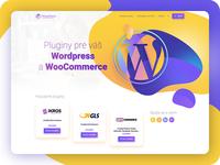 Wordpress & WooCommerce plugins