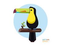 Keel billed toucan - Vector speed drawing (Ep_#01)