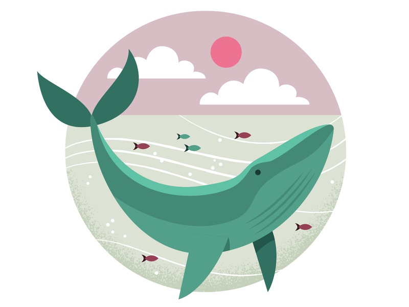 Ocean Whale earth day nature fish whale wildlife ocean earth digital vector illustration