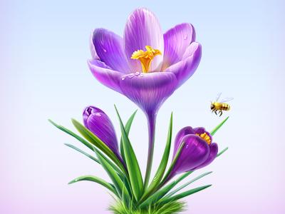 Spring icon flower illustration purple cisco artua