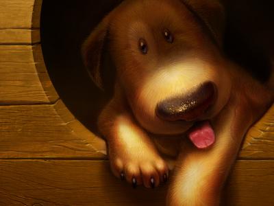 Bummer icon illustration wallpaper dog puppy artua