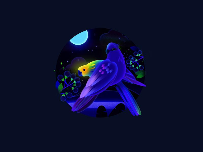 Bird 2 flat night bird artwork game design game art illustration artua