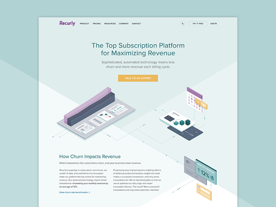 Recurly Maximize Revenue Page design illustration data technology analytics subscriptions revenue