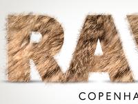 Ravn Logo