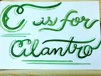 C is for Cilantro