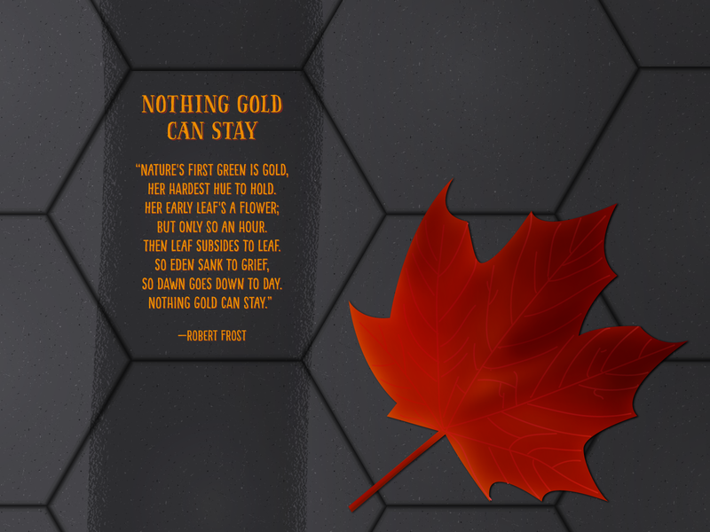 Nothing Gold Can Stay by Robert Frost fall autumn illustration literature adobe illustrator vector illustration vector poetry passion project illustrator