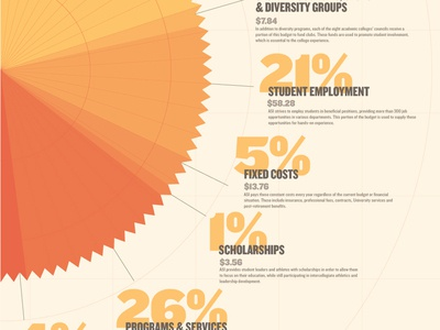 Infographic — Budget Breakdown charts math color scheme adobe illustrator university college design infographic chart typography type illustrator information information design budget