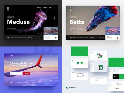 2018 identity color logo web ux ui