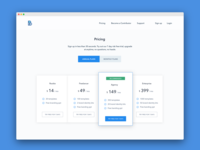 Pricing Page for a New Project