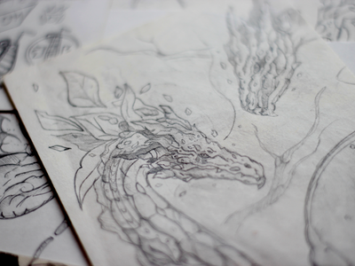 Drafts 02 illustration sketchbook sketches sketch dragon drafts draft