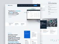 Amenity NLP Website saas website startup website business website fintech typography design corporate corporate website enterprise enterprise website b2b homepage nlp