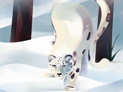 Snow Leopard animal illustration snow leopard white leopard snow animal