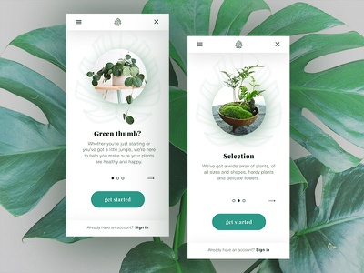Onboarding Plant Store ui design invision plants design web mobile onboarding