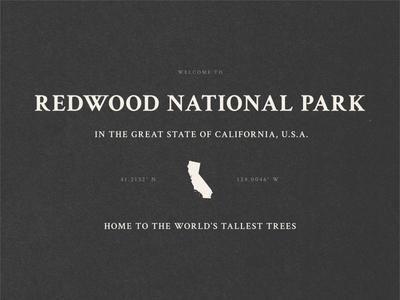 BSDS Design Challenge - National Parks texture redwood california national parks bsds crimson text typography