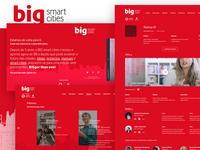 BigSmartCities