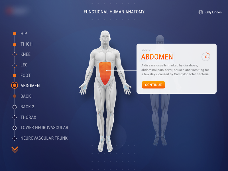 Human Anatomy By Raza Dribbble