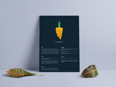 Vegetable posters design illustration print food poster