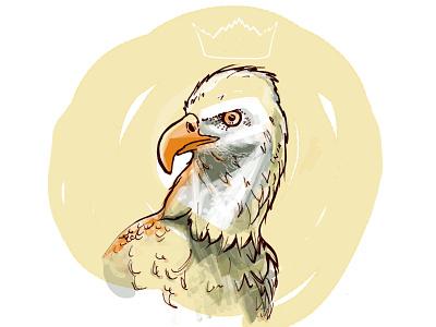 Eagle illustration poland eagle illustration handdrawing hand drawn