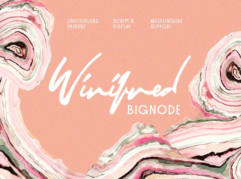 Winifred and Bignode graphic editorial design font collection font bundle signature font display font branding font typography lettering design