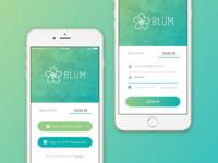 Blum Login Screen