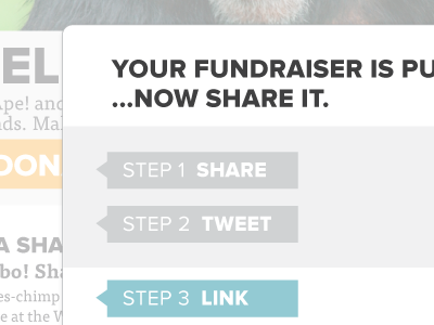 Fundraise Share Interface ui design interface web web app