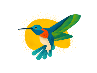 Hummingbird Illustration illustrator design art ui hummingbird clean colorscheme google bird illustration