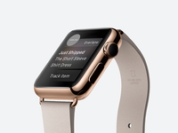 Everlane for Apple Watch