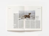 Doble pág. revista/ Bocado