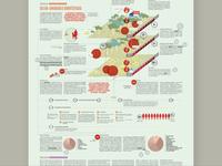 Infografia/ Leishmaniasis