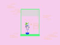 Windows & Flowers