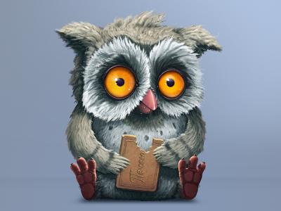 Owl illustration character owl
