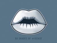 50 Shades Of #15242F - sticker