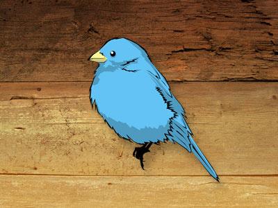 Twitter Bird illustration bird twitter blue icon