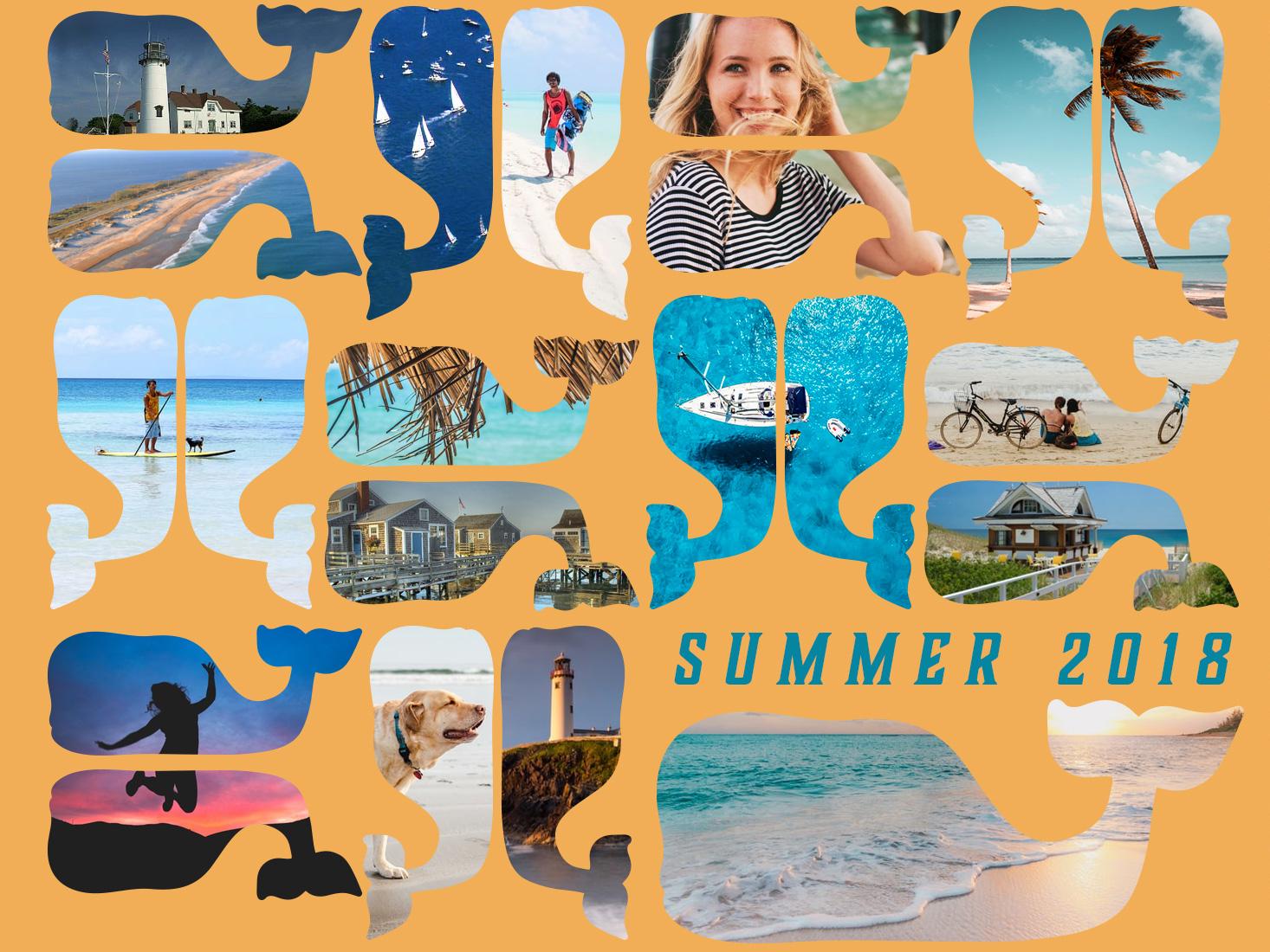 Branding Experiment whale beach lifestyle design branding