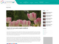 Corporate Website - News Details Page