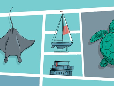 Oceans Detail manta ray sailboat turtle oceans digital canvas