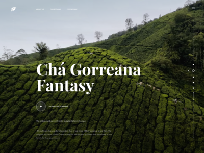 Tea Manufacturer Website Concept