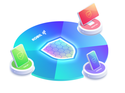Multiplatform Data Protection Illustration