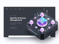 Web Application Identity Security