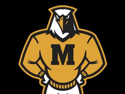mascot mascot eagle bird retro vintage sports athletics