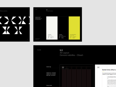 XLAB Brand Guidelines
