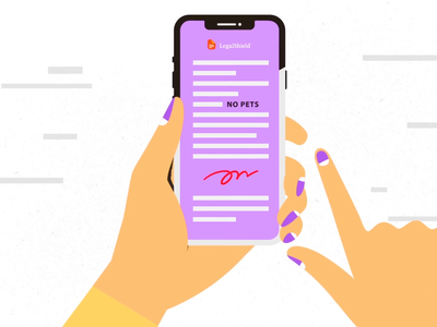 She Said No Pets contract signature signup mobile phone conflict women clutter cats tech explainer digital character technology 2d design vector motion graphics illustration animation