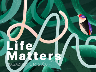 Life Matters | Illustration Practice bulgaria matters life warmup practice study texture bird jungle vines illustraion