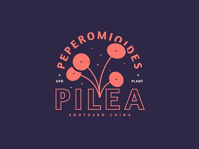 Pilea Peperomioides logo plants lines illustration plant peperomioides pilea chinese money plant ufo plant badge kps3100
