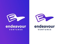 Endeavour Logo Winner