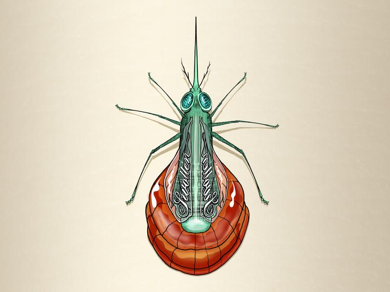 Inktober - Nasty Swollen mosquito legs insect eyes bug needle blood illustration challenge illustration art inktober swollen mosquito script lettering illustration