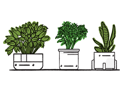 Potheads green planters pots plants digital illustration design757 design illustration graphic design