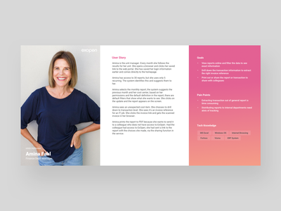 Persona Template user journey ux pain points goals user story template persona